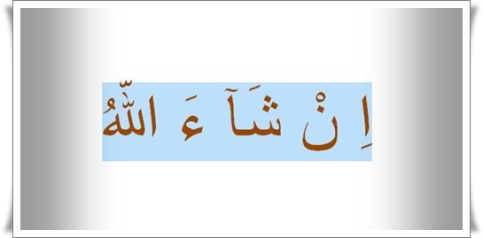 InsyaAllah (اِ نْ شَآ ءَ اللّهُ )