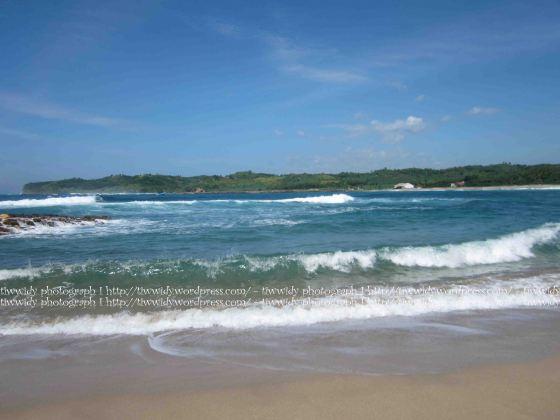Pantai Tambakrejo, Kabupaten Blitar
