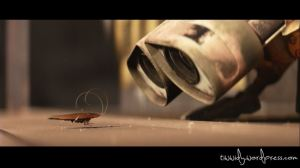 Wall-e'a pet Cockroach