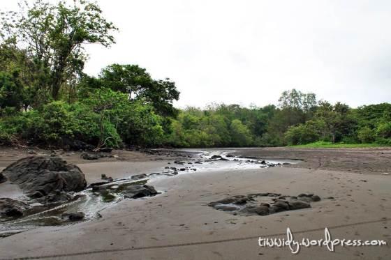Aliran Sungai di Pantai Grajagan, Banyuwangi