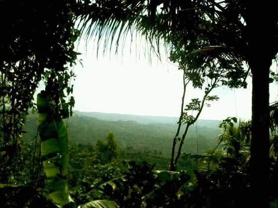 pemandangan alam Dukuh Tumpakdoro, Desa Pamongan, Mojo, Kediri