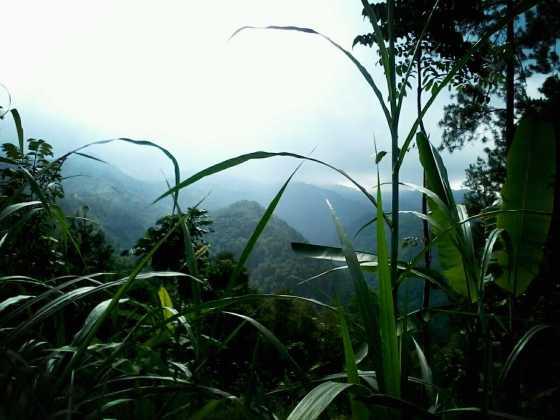 Lereng Gunung Wilis dari Tumpakdoro